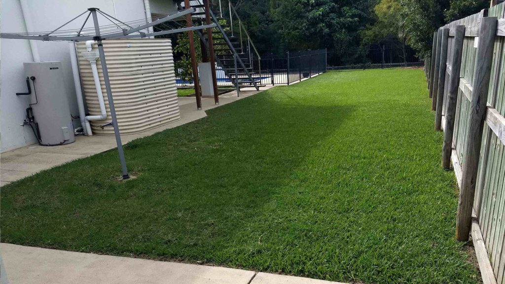 iMow & iGarden - Lawn Mowing in Mackay - Back Yard in Need a Mow